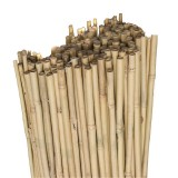 Bambus kolac 120cm 498/338