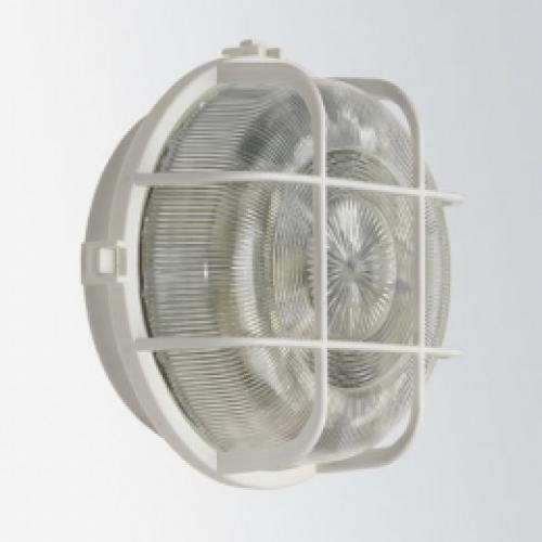 Zidna/stropna svjetiljka 100W bijela 66002